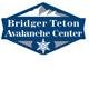 btnf-avy_logo